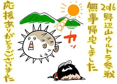2016nobeyama_report